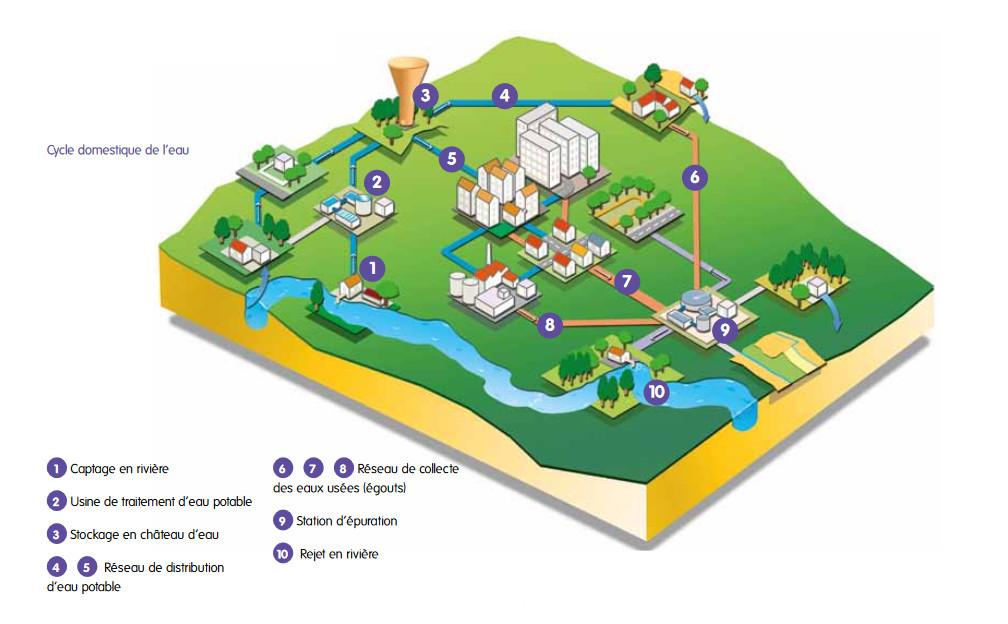 schéma petit cycle de l'eau